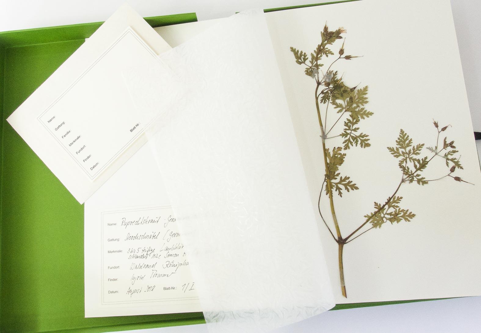 Sammelmappe für gepresste Pflanzen