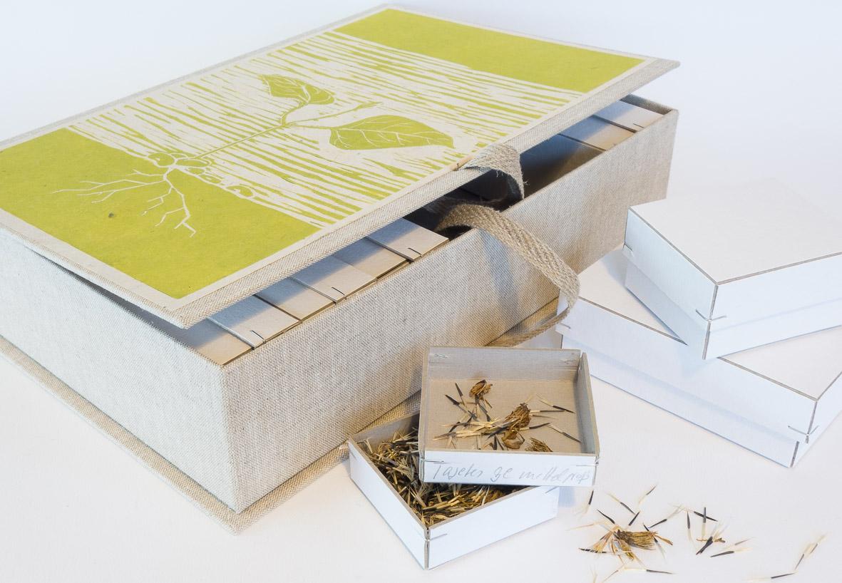 Sammelbox, Samenbox, Saatgutaufbewahrung, Sammelbehälter
